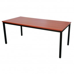 Steel Frame Table 705H