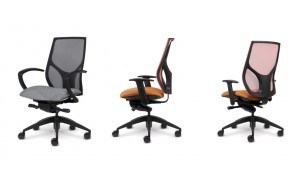 Choosing an Office Chair?